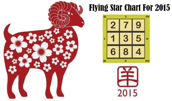 flying-star-2015