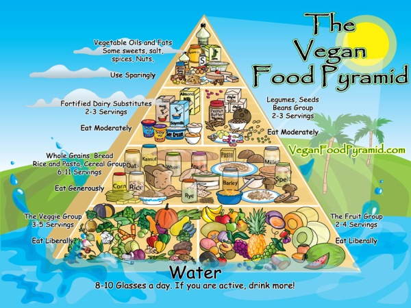 vegan-pyramid-web-big